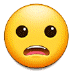 😦 frowning face with open mouth Emoji on Samsung Platform