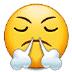😤 face with steam from nose Emoji on Samsung Platform