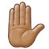 ✋🏽 raised hand: medium skin tone Emoji on Samsung Platform