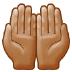 🤲🏽 Medium Skin Tone Palms Up Together Emoji on Samsung Platform