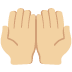 🤲🏼 palms up together: medium-light skin tone Emoji on Twitter Platform