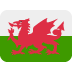 🏴󠁧󠁢󠁷󠁬󠁳󠁿 flag: Wales Emoji on Twitter Platform