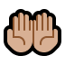🤲🏼 palms up together: medium-light skin tone Emoji on Windows Platform